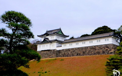 10 - Japan. Tokyo. Imperial Palace