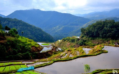 Philippines, Banaue, Rice Terraces