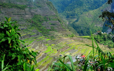 Philippines, Batad, Rice Terraces